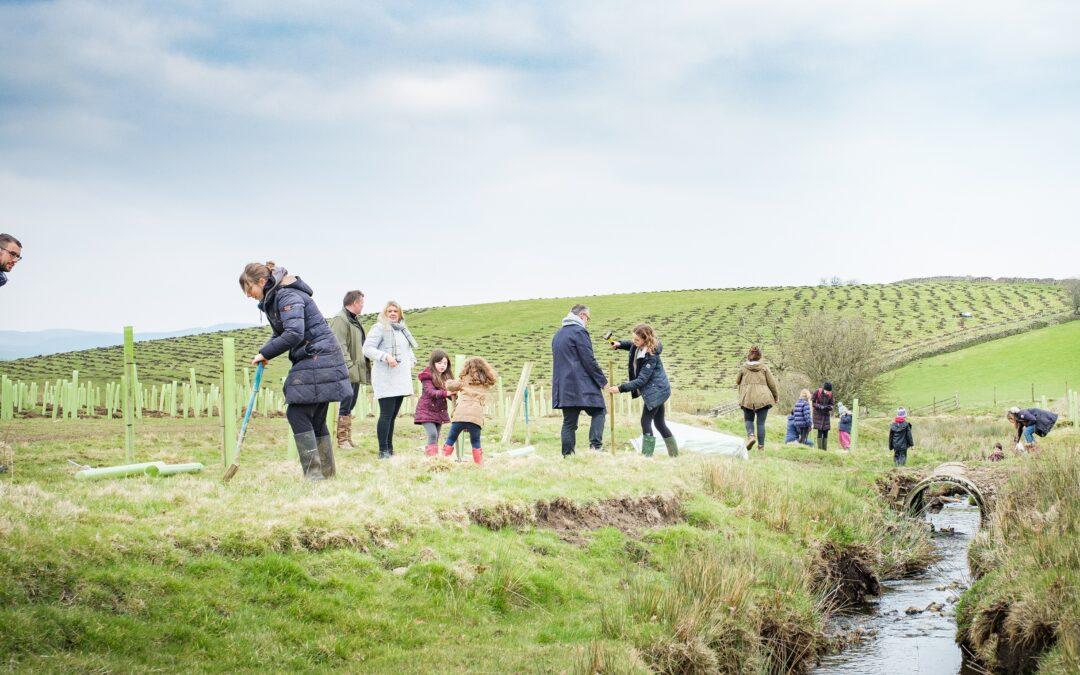 Broughton Sanctuary home to England's biggest planting scheme this season