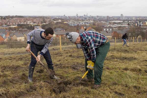 Planting trees in Leeds