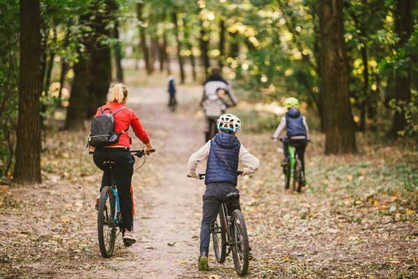 Cycling along a woodland path