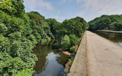 Environment Agency and the White Rose Forest encourage landowners to introduce natural flood management techniques in the River Aire catchment