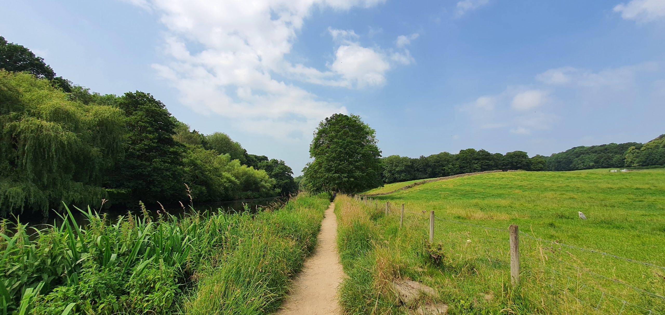 River Aire path